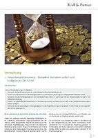 Gesamtprojektsteuerung (Rödl & Partner: Focus Public Sector)